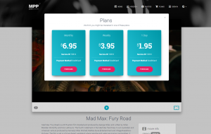 MPP Global video metering screenshot